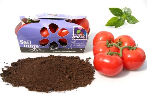 a beautifully designed box with 500 grams of vine tomatoes, a little bag of compost and organic basil seed.